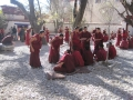 Monk Debating at Sera Monastery